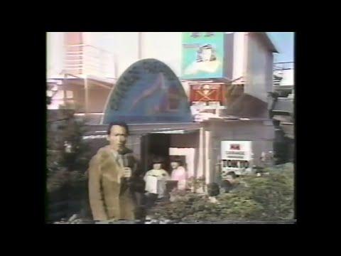 80's 原宿 TV CREAM SODA BLACK CATS 11PM 1