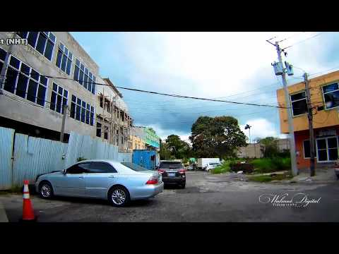 More from Mandeville Jamaica | Walinton Mosquera