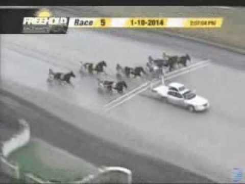 Freehold Accident On 01 10 14 In Race 5 Starting Car Runs Into Horses