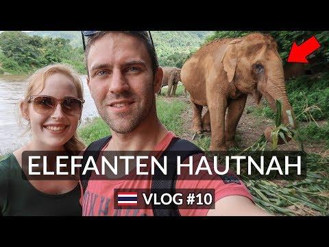 EIN TAG MIT ELEFANTEN ★ Elephant Nature Park | Chiang Mai | Thailand ★ Vlog #10