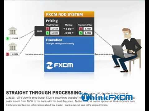 No conflict forex broker