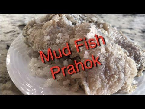 Khmer Food   Mud FISH ( Prahok ) របៀបធ្វើប្រហុក