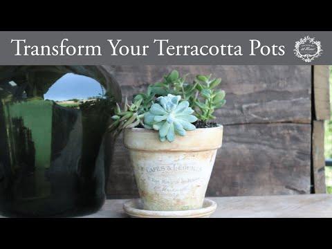 Transform Your Terracotta Pots