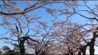 日本テレビ系列各局・沖縄テレビ(フジテレビ系列)「24時間テレビ 愛は地...