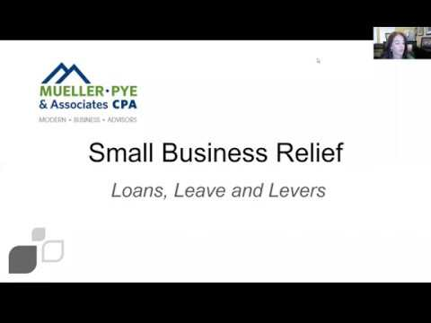 small-business-relief---loans,-leave-and-levers