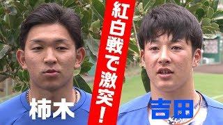 ファイターズキャンプ恒例の国頭紅白戦では吉田vs.柿木のマッチアップで...