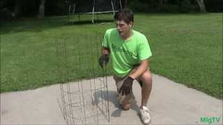 How To Make The Best Tomato Cage Trellis For Cheap
