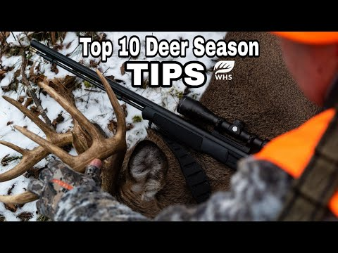 How To Hunt Bucks During Gun Season