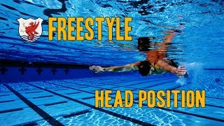 Swimisodes - Improve Freestyle Technique - Head Position