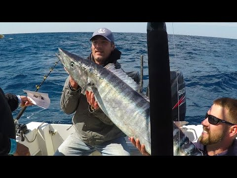 High Speed Trolling For Wahoo:  Day 2 Of The Tournament