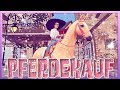 Wir KAUFEN Den PALOMINO Achal Tekkiner 🦄 Star Stable Horses APP Pferdekauf [SSO]