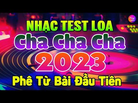 Nhạc Test Loa Không Lời 2021 7X 8X 9X Phê Từ Bài Đầu | Hòa Tấu Cha Cha Cha Nhạc Trẻ Xưa Không Lời