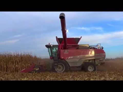 Central Illinois Corn Harvest 2016