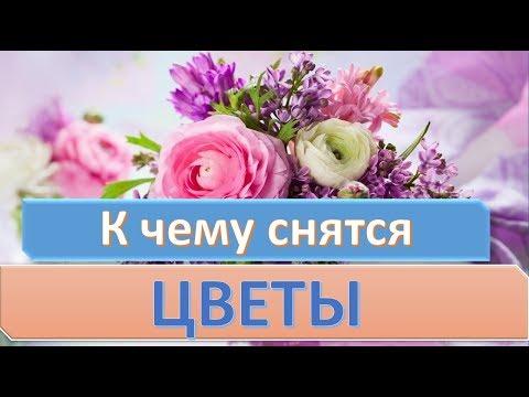 К чему снятся цветы | СОННИК