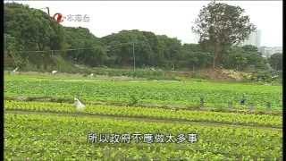 ATV 時事追擊 - 新農業政策 2015-03-28