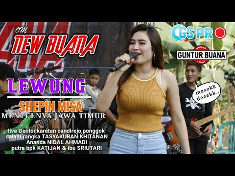 Bikin Gagal Fokus!!! Shepin Misa - Lewung - New Buana || Guntur Buana Audio
