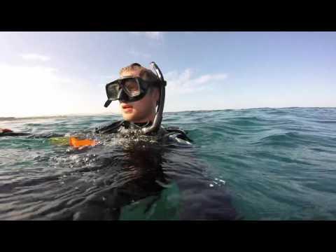 Diving Perú