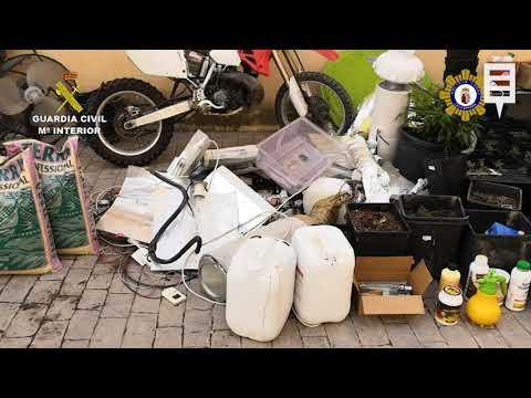 Cae un punto de producción y venta de drogas en Calasparra