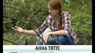 Как подвязывать огурцы в теплице и на улице -  уДачные советы(Телеканал