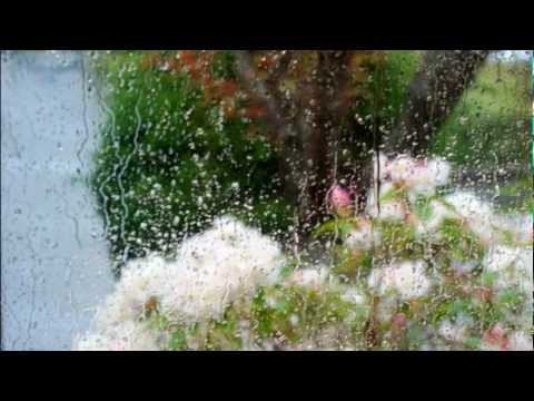 "Chopin - Prelude in D-flat major, Op. 28 No. 15 (""Raindrop"") - Vladimir Ashkenazy"