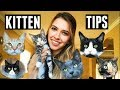 15 THINGS I WISH I KNEW BEFORE GETTING A CAT/KITTEN