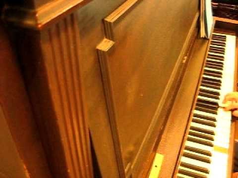 David Melech Yisrael - piano