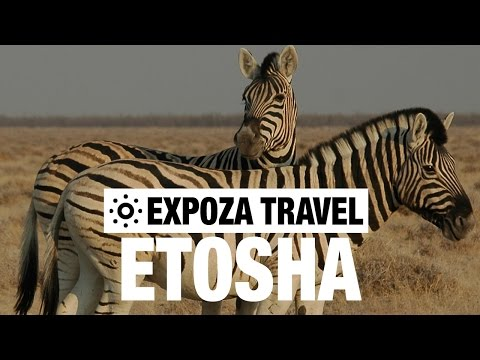 Etosha Vacation Travel Video Guide