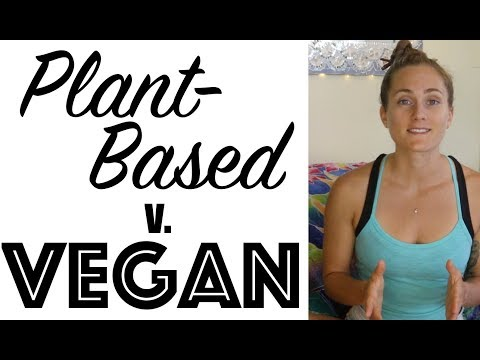 PLANT-BASED V. VEGAN - Semantics, Effective Activism, and Ch