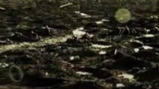 Iron Maiden - Paschendale - Video Clip