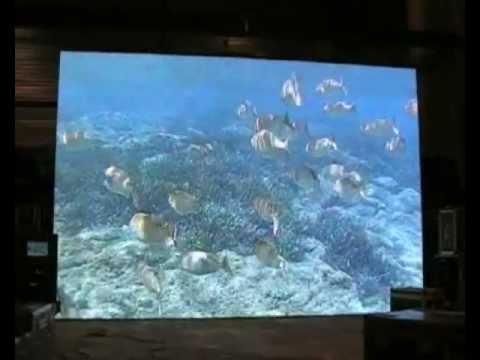 Lot 615: 10 mm LED Screens system: 22 m2. Auction Sale LUMIERE & SON PARIS II