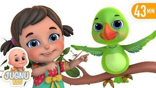 Nani Maa Ne Tota Pala  नानी माँ ने तोता पाला  | Hindi Rhymes for Children by Jugnu Kids