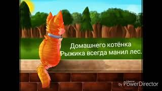 """История Огнезвёзда ( события книги """"Стань диким"""" )"""