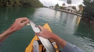 fishing the florida keys florida fishing road trip chronicles 3