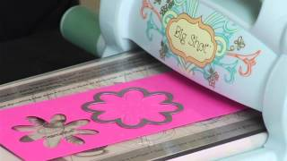 Introducing Sizzix Triplits Die Sets by Stephanie Barnard