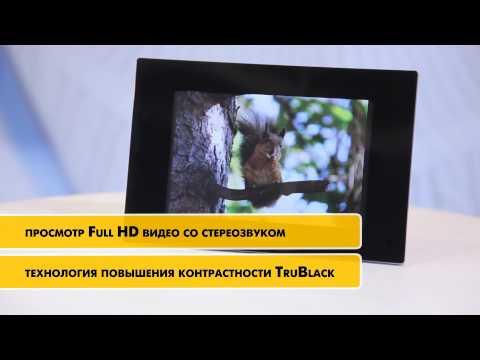 Sony Россия