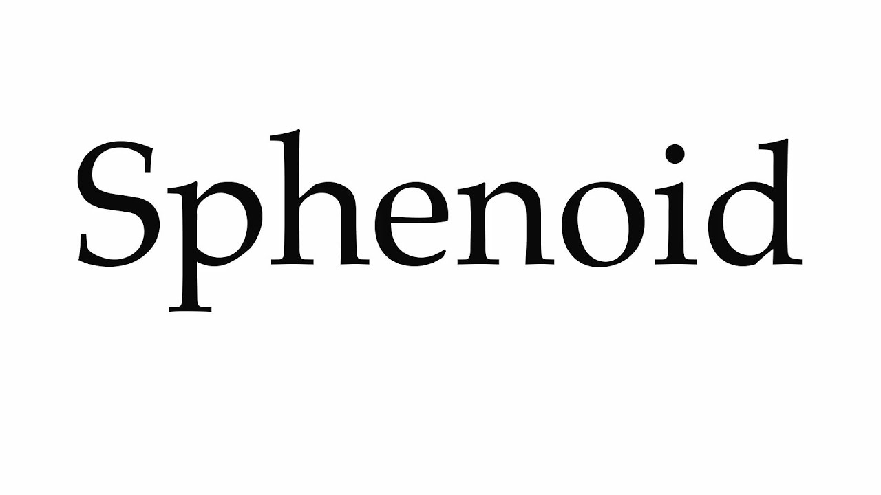 how to pronounce sphenoid - youtube, Human Body