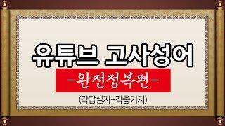 김영수의 유튜브 고사성어 (완전정복편) 각답실지~각종기지