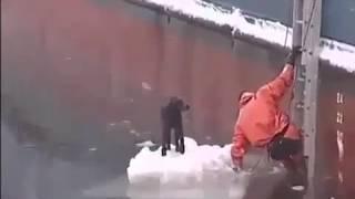 Рискуя жизнью, проплыл в ледяной воде и спас собаку. Спасибо таким людям!