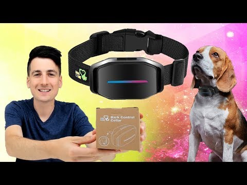 How To Make A Dog Stop Barking Dog Care Dog Bark Collar Review