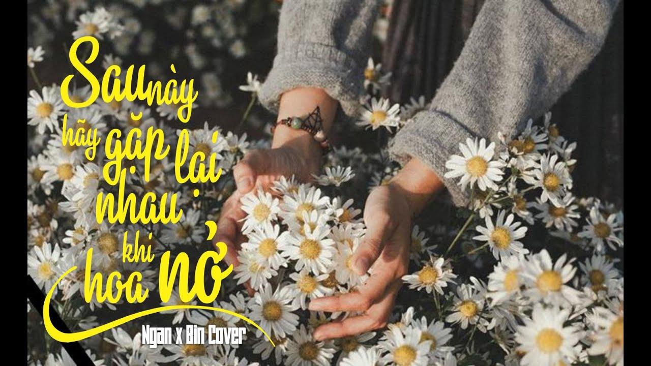 NGUYÊN HÀ – SAU NÀY HÃY GẶP LẠI NHAU KHI HOA NỞ   ACOUSTIC COVER MV Lyrics I NGÂN X BIN