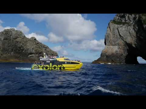 Discover the Bay of Islands Hole in the Rock Cruise