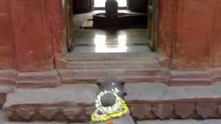 """""""Om Karpur Gaurang Karunavtaram,Sansar Saram"""""""