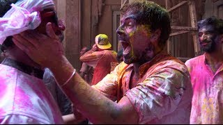 Travel India - Covered In Colour - Holi Festival, Vrindavan