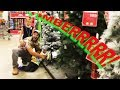 🎄Cutting our CHRISTMAS Tree down at WALMART!