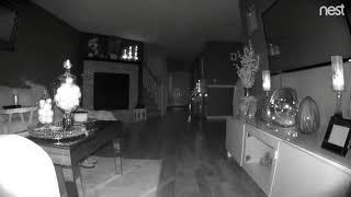 Nest cam see's ORB ghost shut off my light