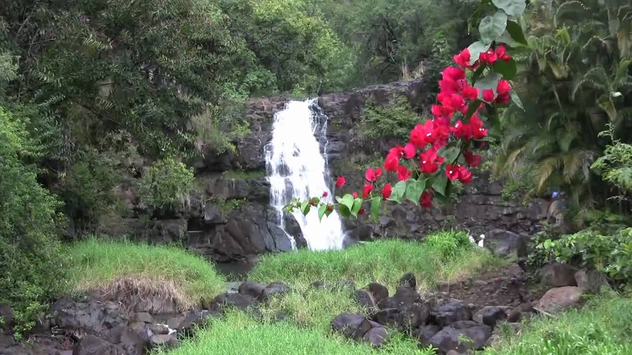 Oahu Attractions - Waimea Falls