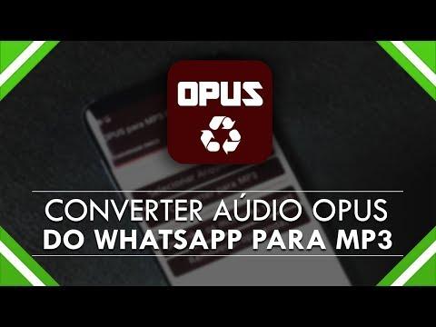 COMO CONVERTER ÁUDIO OPUS DO WHATSAPP PARA MP3
