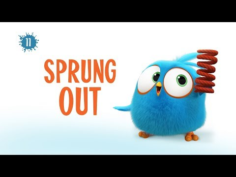 Angry Birds Blues | Sprung Out - S1 Ep11 #New