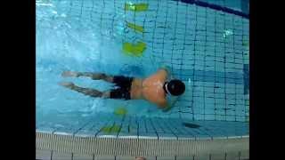 フィットネススイマー 男性 51歳 水泳歴 5年 大和部屋ホームページ ...