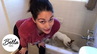 Brie Bella's latest maternity workout: Bathing Winston and Josie at the same time!